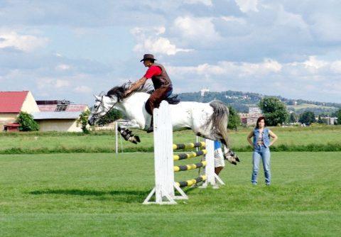 Jezdectví - Krásné Loučky