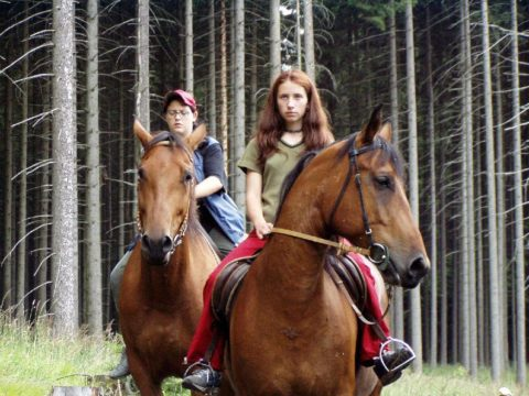 Jezdectví - Ranč Solný potok