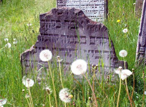 ŽŽidovský hřbitov Osoblaha