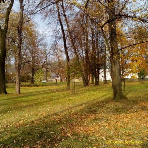 Marketa \Mylkova Branticky park pod listiml